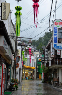 Nozawa_2013
