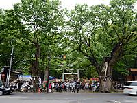 Kurayami_2016_1