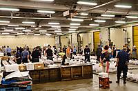 Tsukiji_seri_1